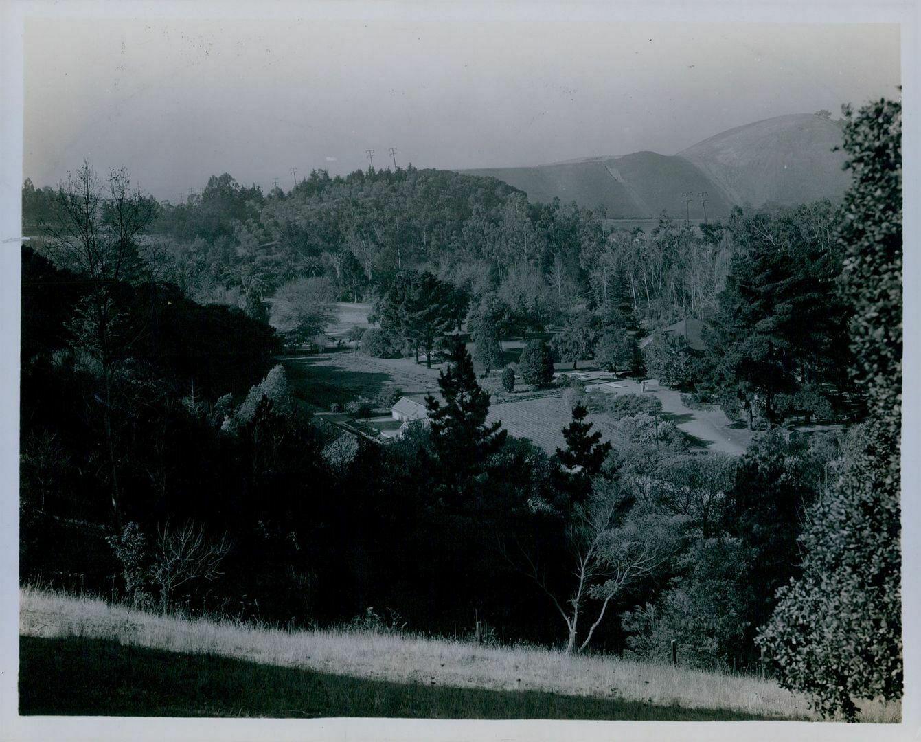 Durant Park Talbot estate